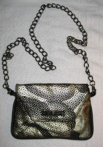 bag with chain 1