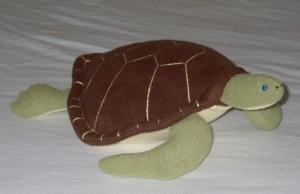 turtle r side